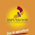 Diputación de Guadalajara con la Apicultura